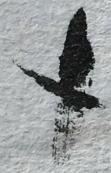Joanne Graf: Dropped brush makes bird