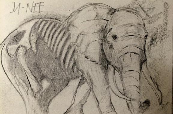 Dream of  Old Man Elephant, L Doctor Sketchbook