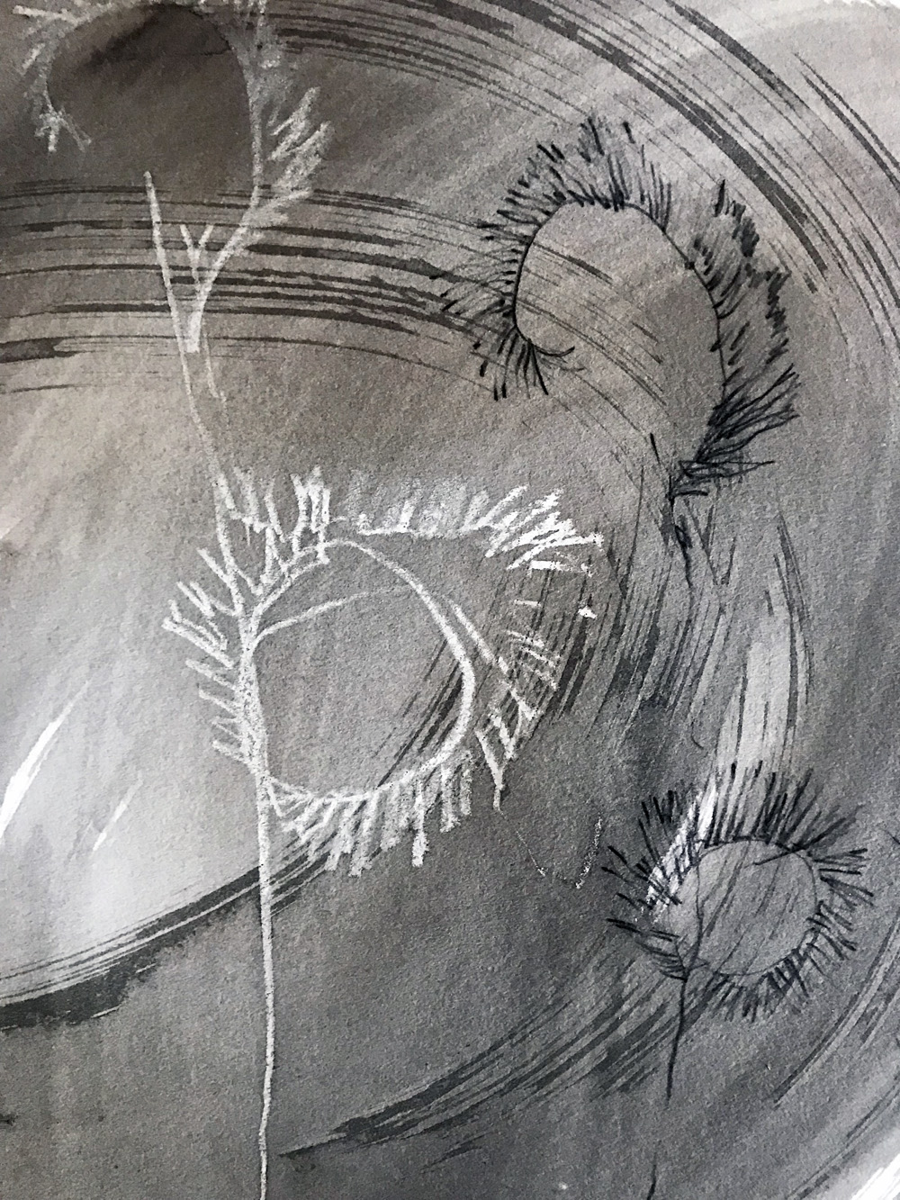 Blind contour drawing of desert grass, Katie Barnes