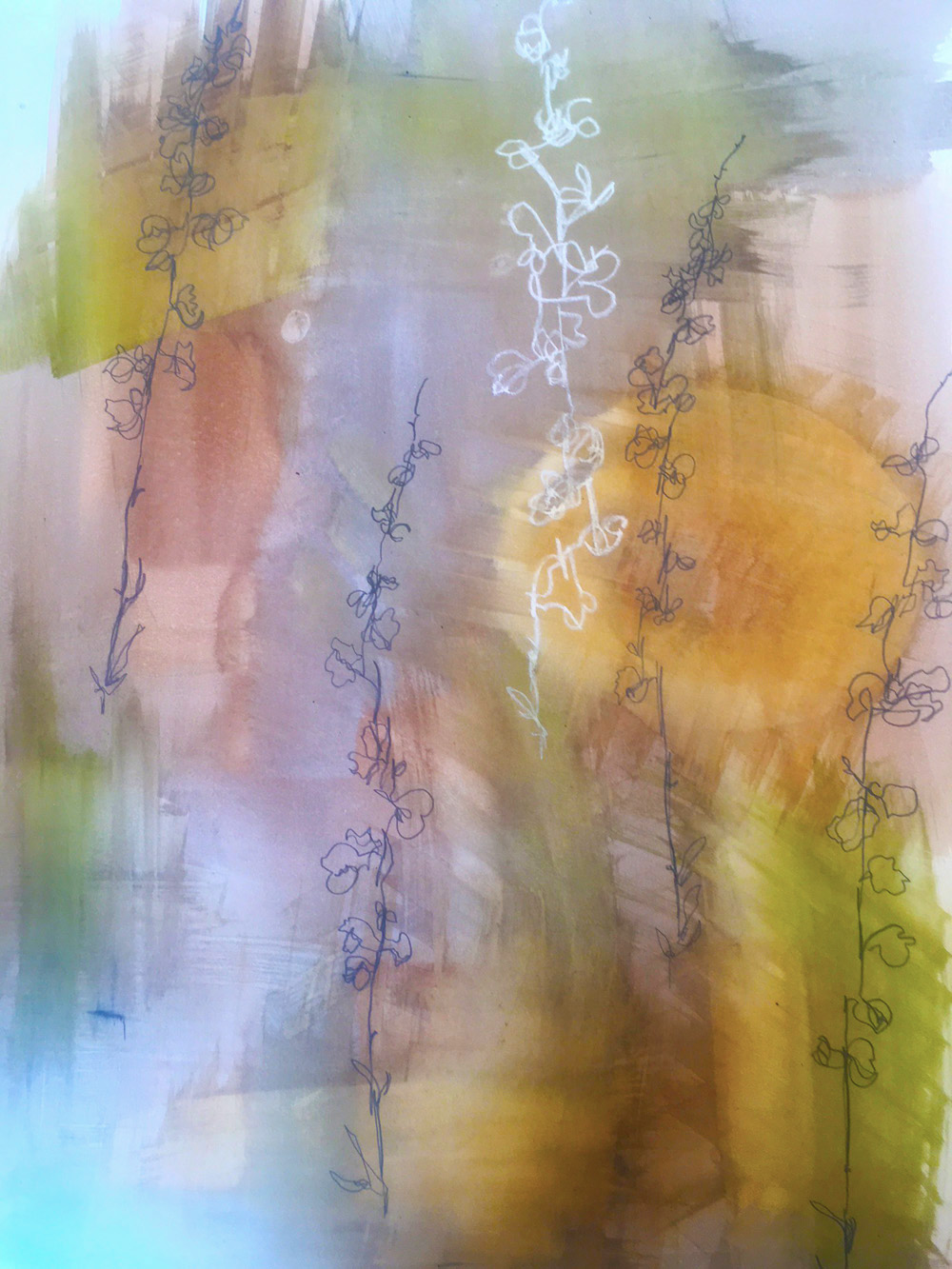 Blind contour drawing of Four wing saltbush, Romy Colonius