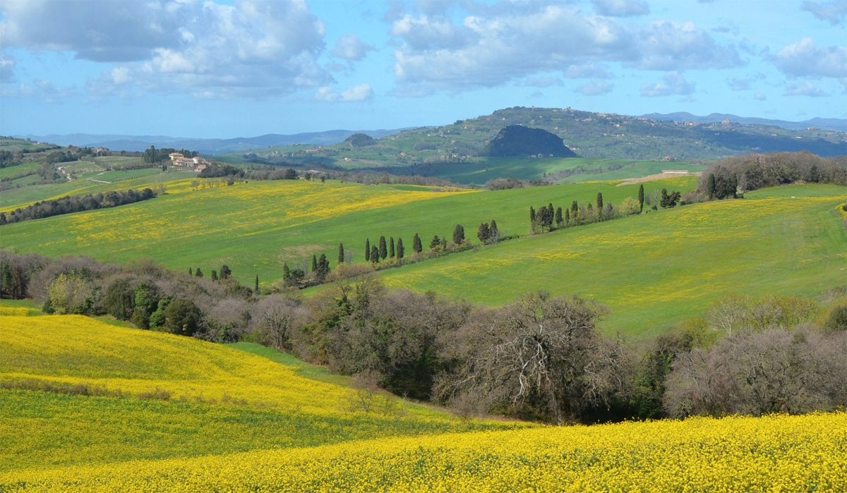 The landscape around our villa in Tuscany