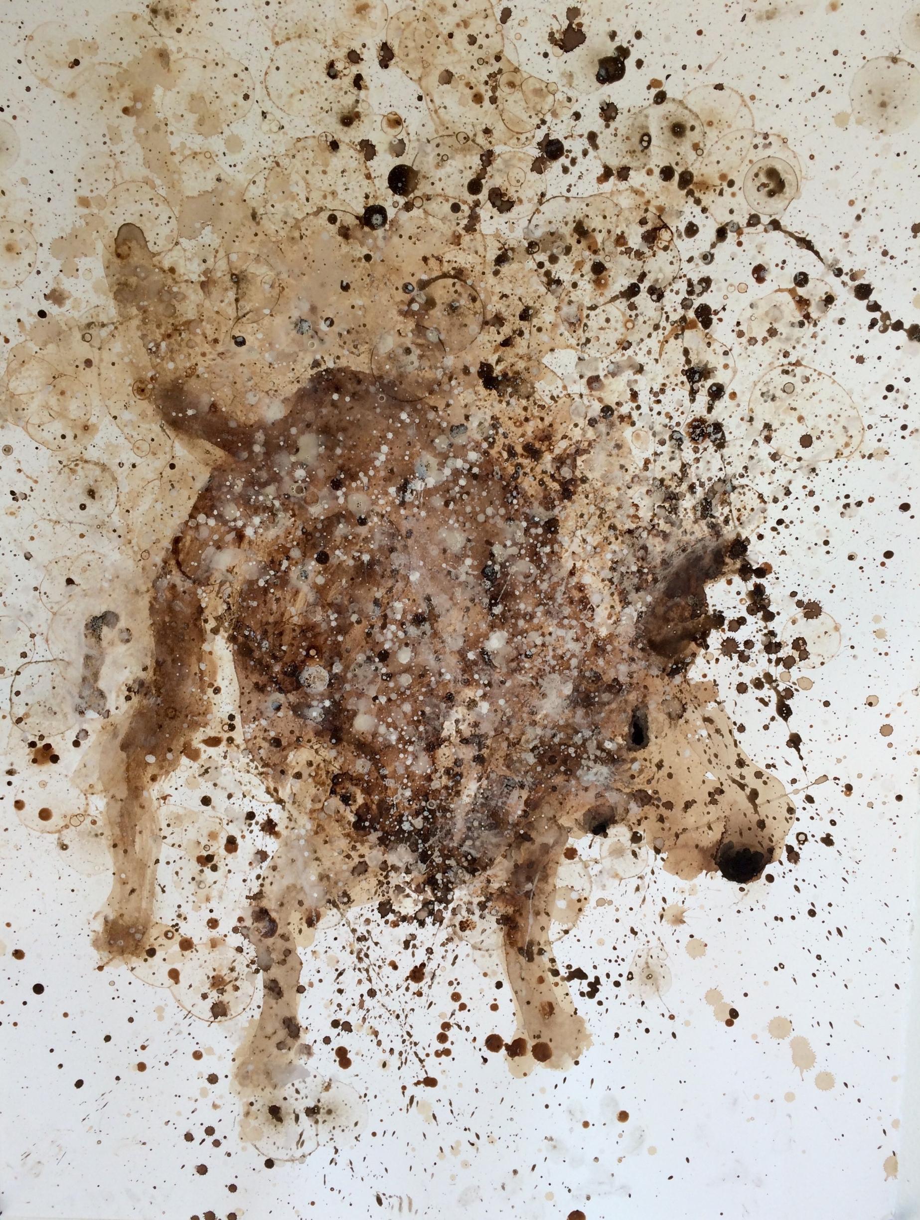 shake shake shake - golden IV  walnut oil, and coffee on Stonehenge
