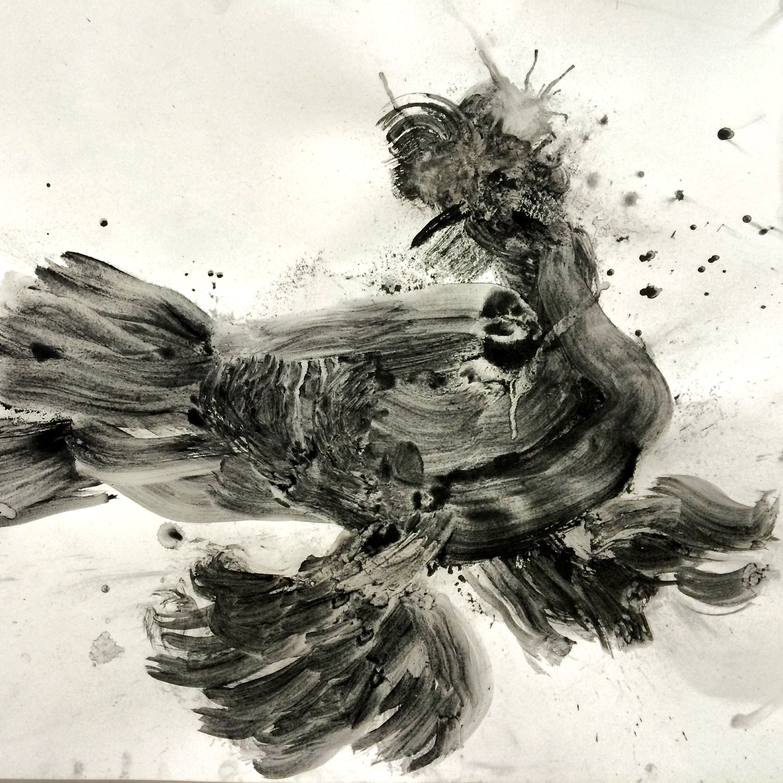 "German beak trumpeter pigeonwith leg muffs.   charcoal   24"" X 19"""