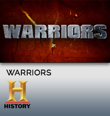Warriors_Widget.jpg