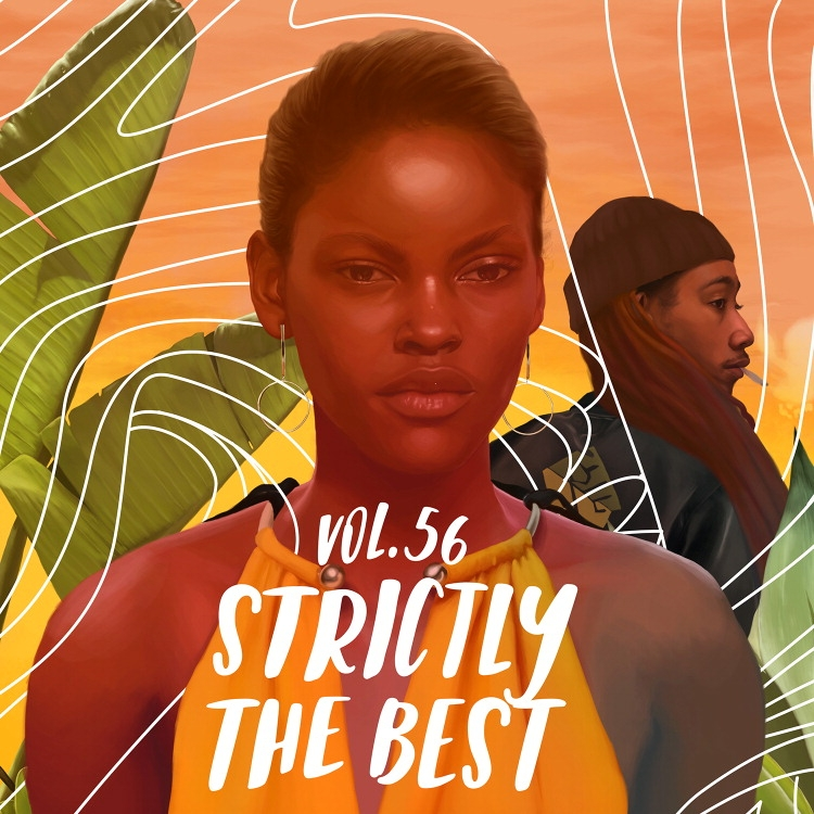 Various Artists - Strictly The Best Vol. 56 - Artwork.jpg