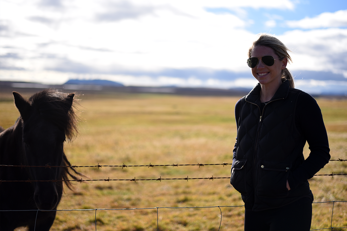 Enjoying Icelandic horses from a safe distance.