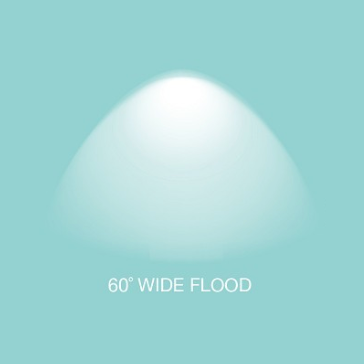 60Flood.png