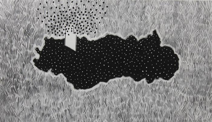 2014 / charcoal on paper / 67cm x 38cm