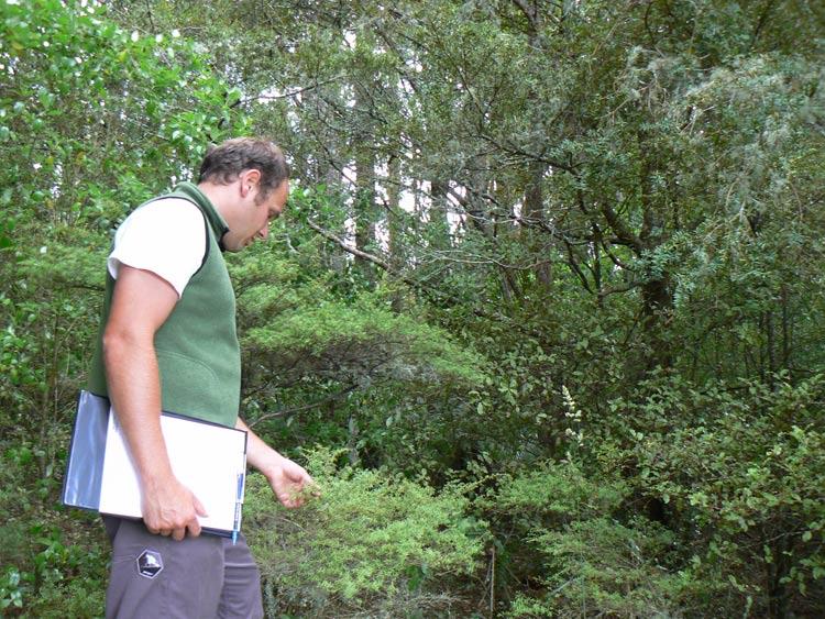 Heath Worsfold undertaking an Ecological Assessment