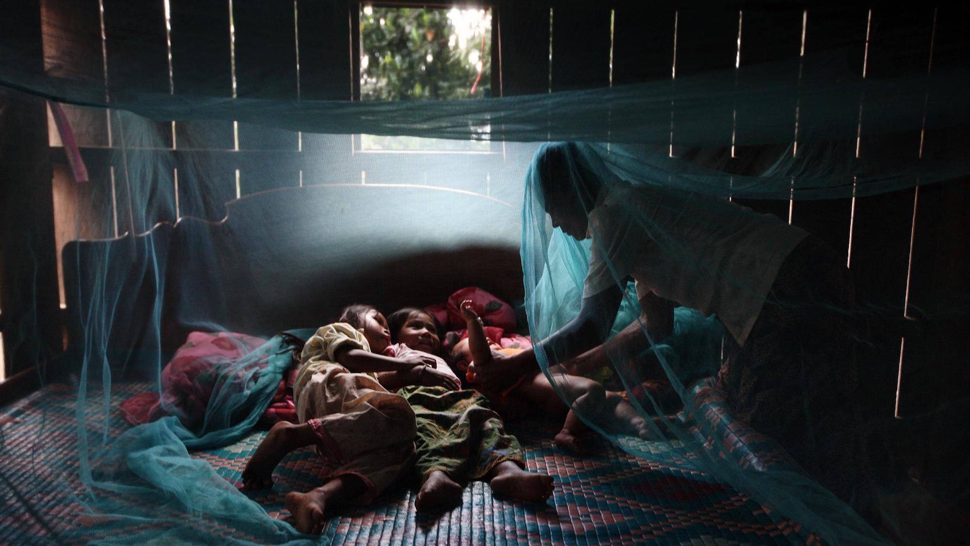 malaria-net.JPG