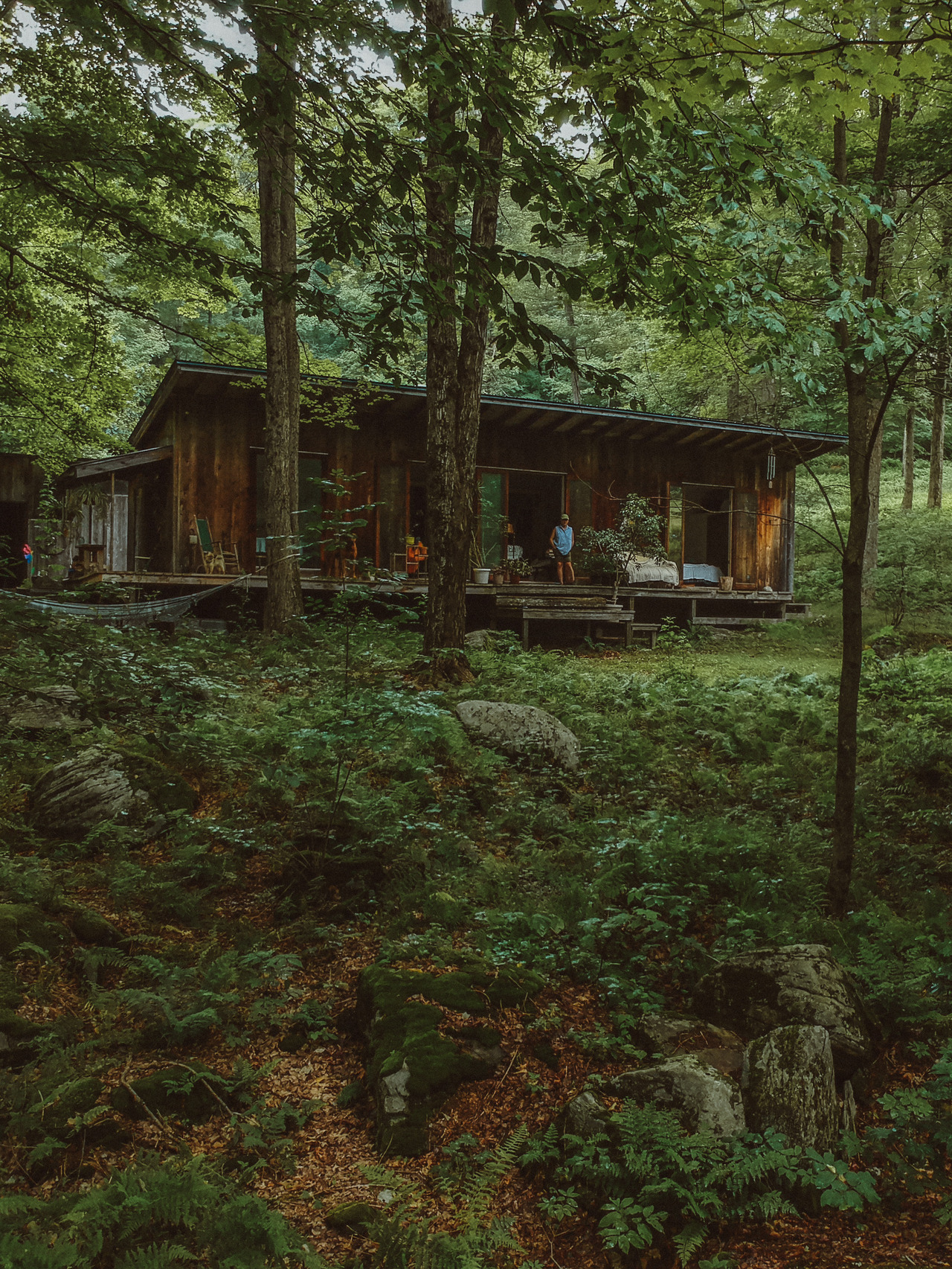 Judy at the cabin she built with her father in the late 1960s. Set up a quiet mountain road in the Western Catskills, on a parcel of land given to her by a friend, Judy has lived here ever since and is still the life of any party.  Photo by  Peter Crosby  (@pbcrosby).