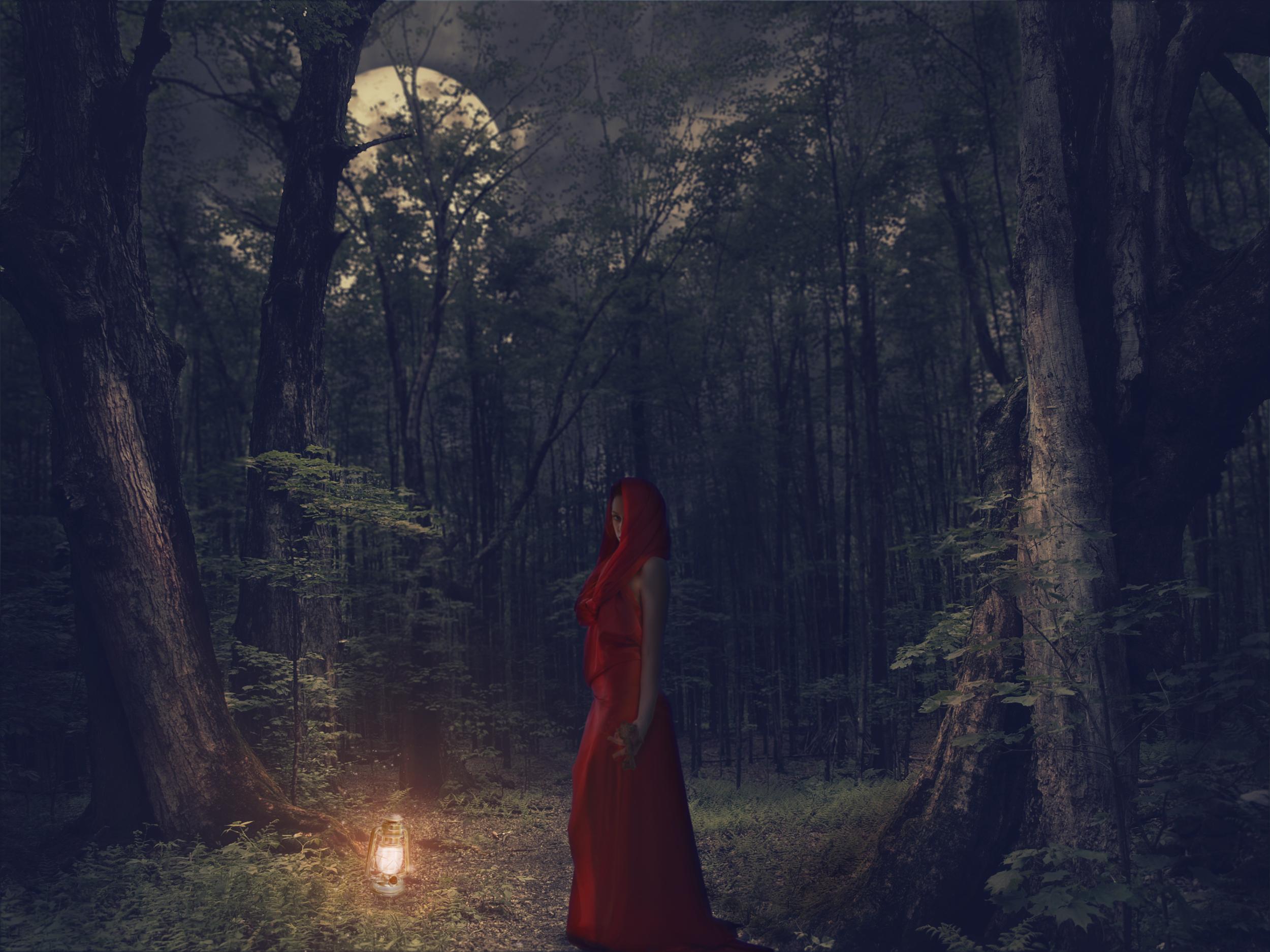 forest_after.jpg