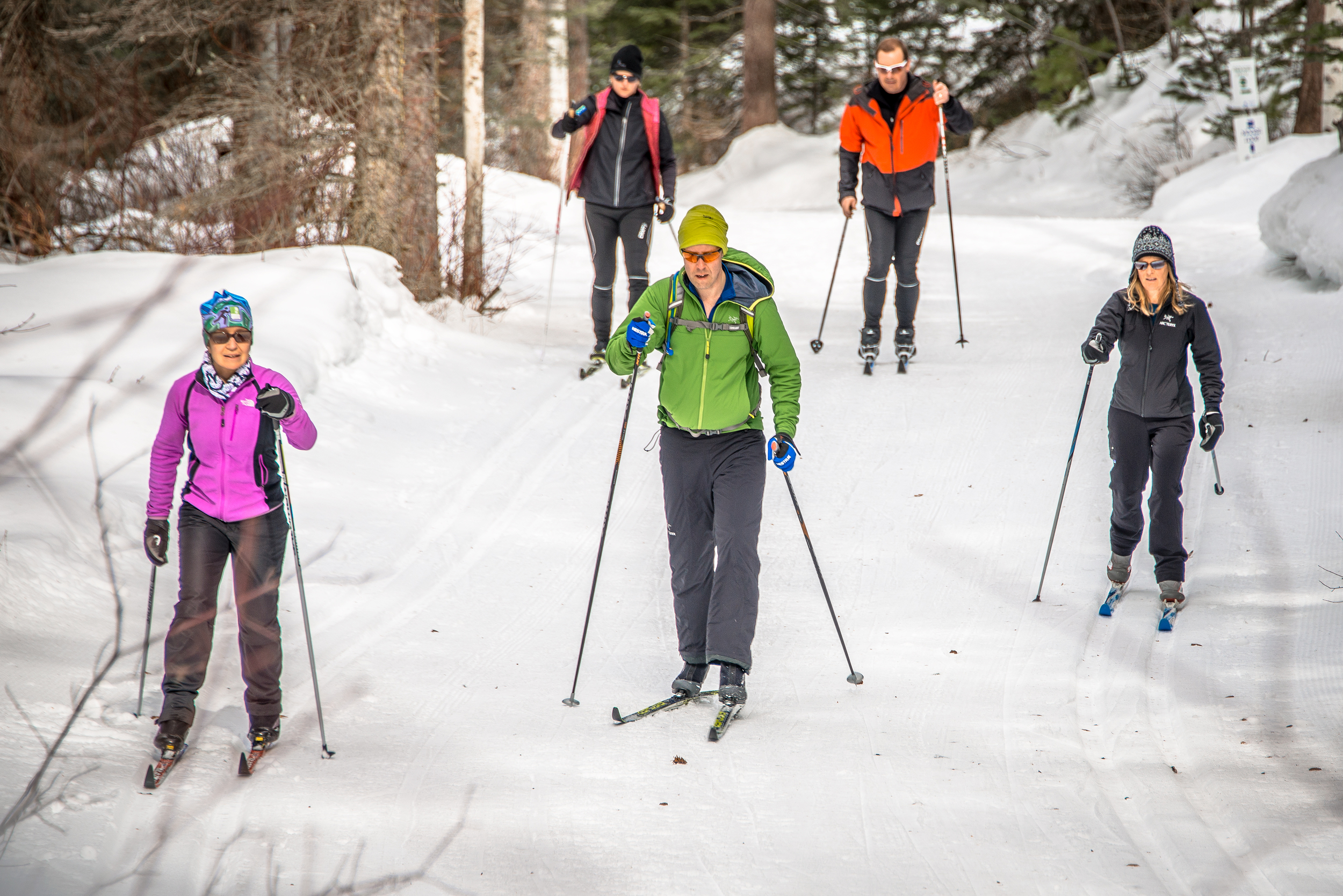 Sunshine and ski trails