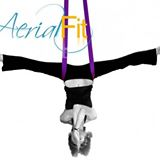 Aerial Fit in Charleston NC offers top notch aerial training to anyone who wants to learn.