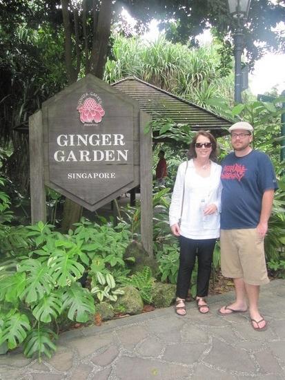1.1300697661.ginger-garden.jpg