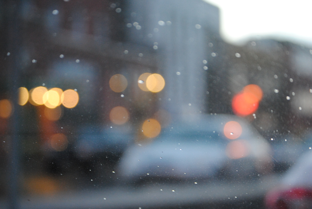 Kristina Servant    / Flickr /    CC
