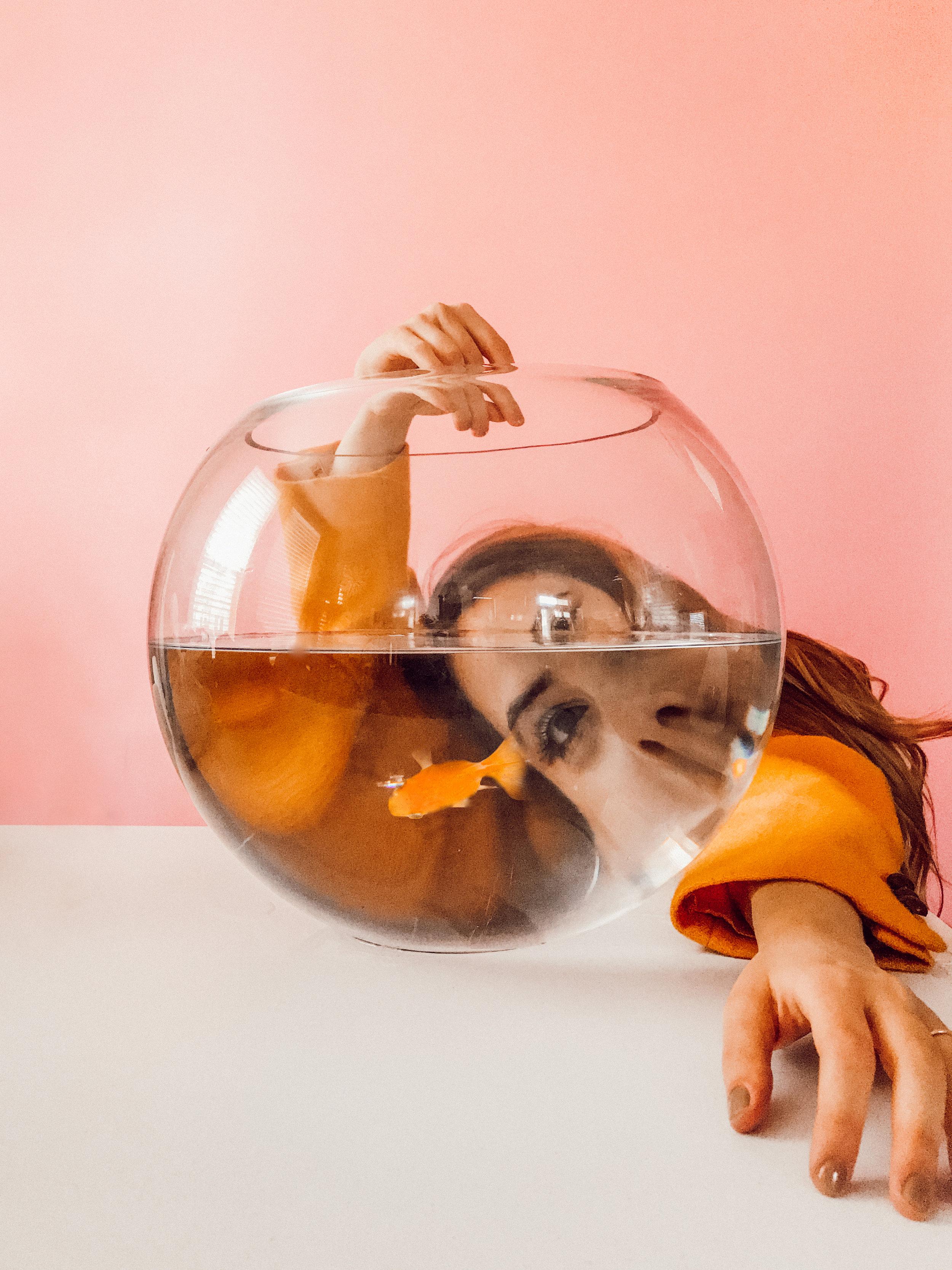 goldfish-2.jpg