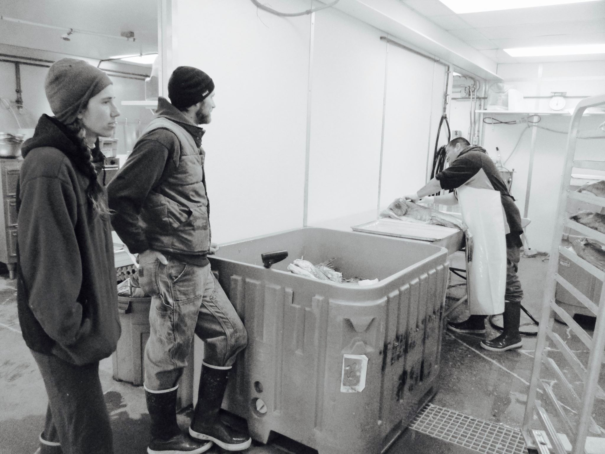 Here we are checking up on lingcod processing over at Coastal Cold Storage, one of the local small businesses where we get our catch filleted and packaged up. Photo by Erin Jakubek.