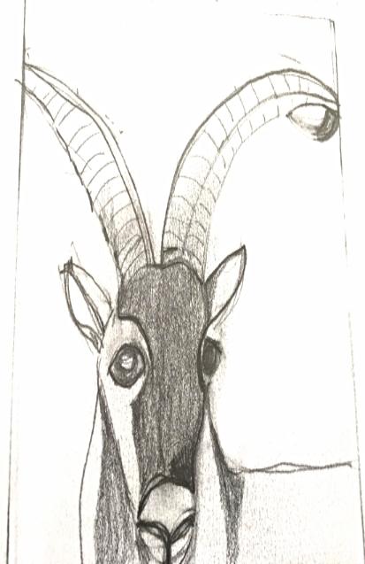 Pyrenean Ibex R.I.P.
