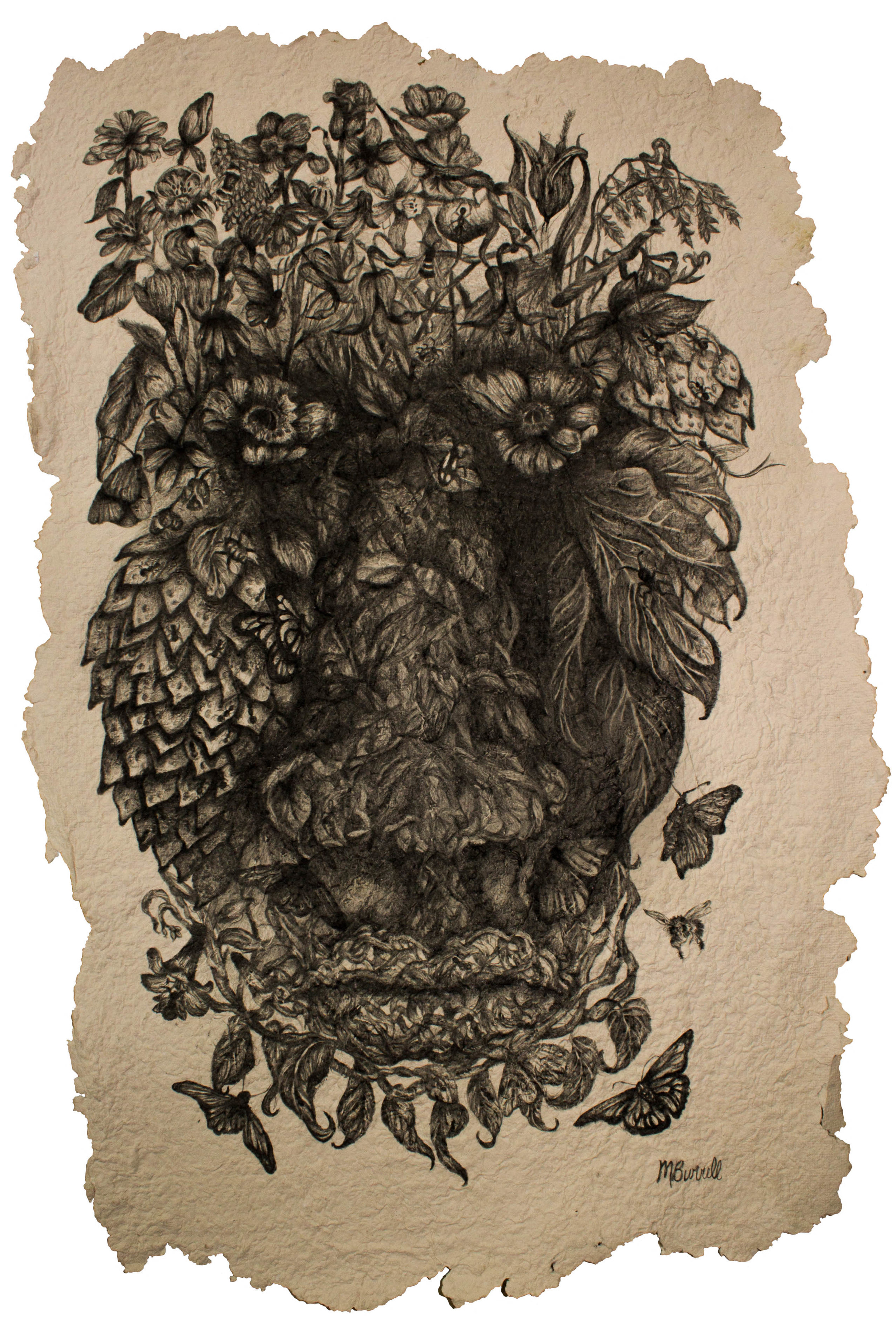 """Media: Graphite, hand-made paper  Size: 17"""" x 23""""  Completed in 2016, """"Evolved Habitats"""" is the sixth piece in the """"Evolved Series"""". This image, like the others in this series depict a human face, that has been composed using textures and plant, and insect life. When making this drawing, I was thinking about our human connections to life, and how every part of our being has been made possible through our environments. I then began to question the human existence and what would our remains, or the shrines placed only for human consumption, would look after being left to nature's devices."""