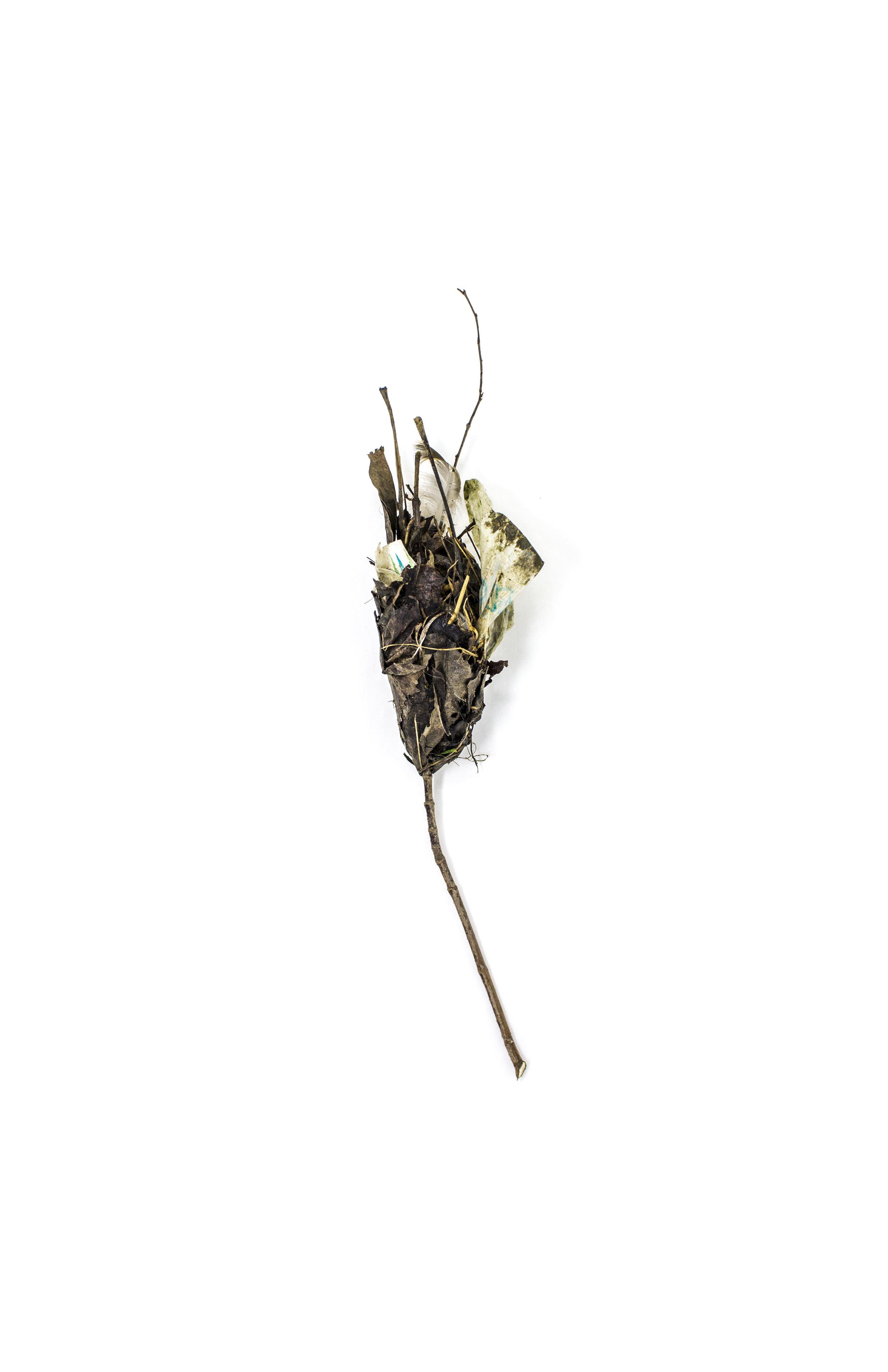 Debris_Flower_15.jpg