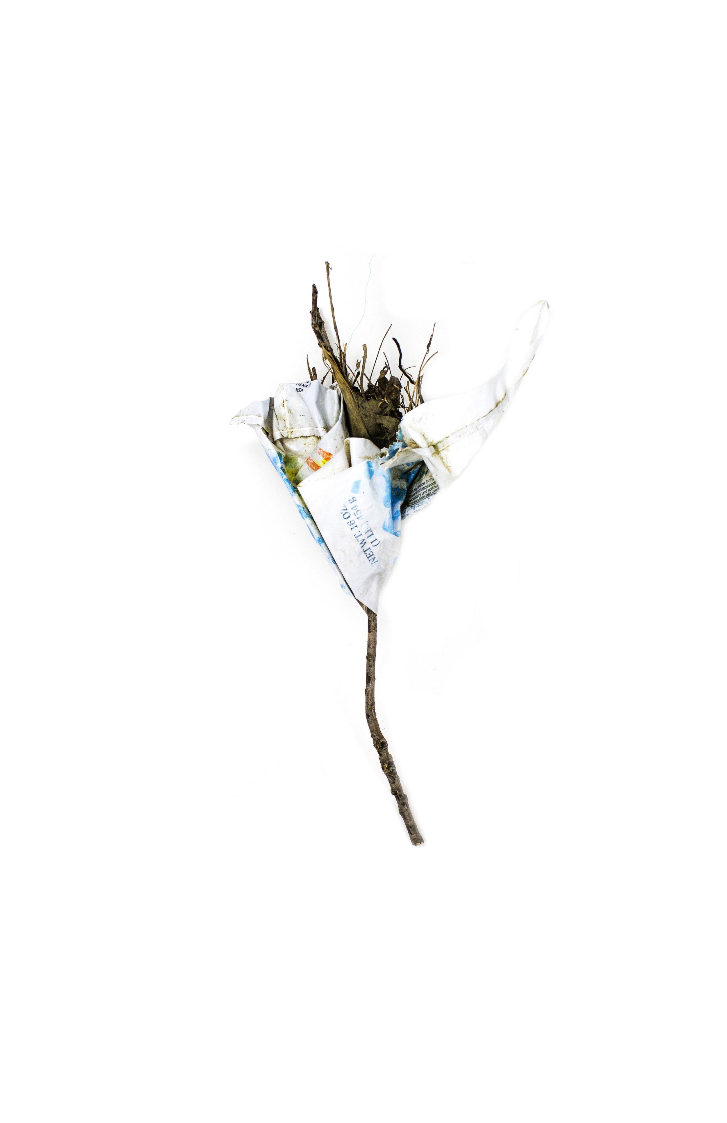 Debris_Flower_19.jpg