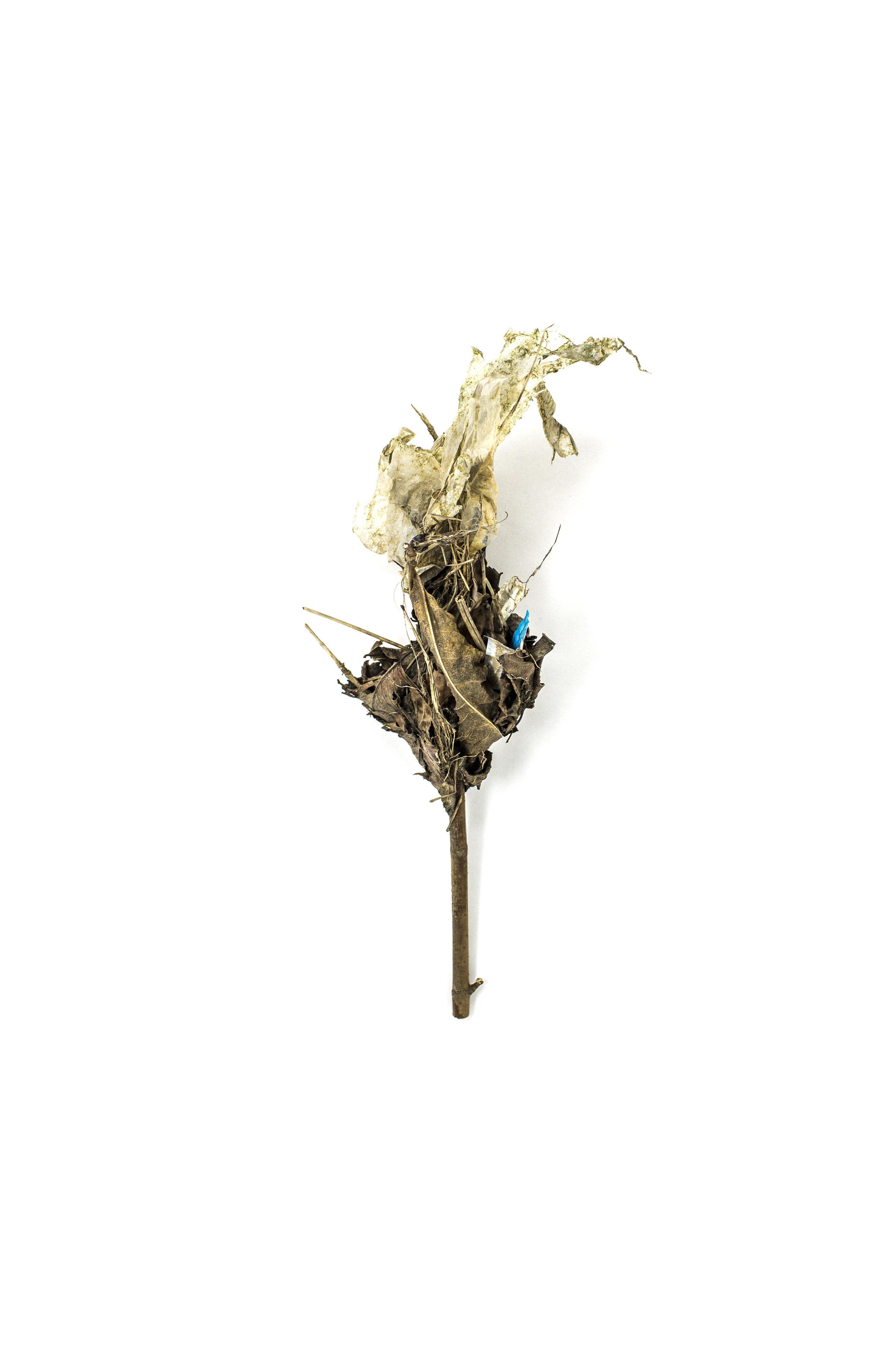 Debris_Flower_26.jpg
