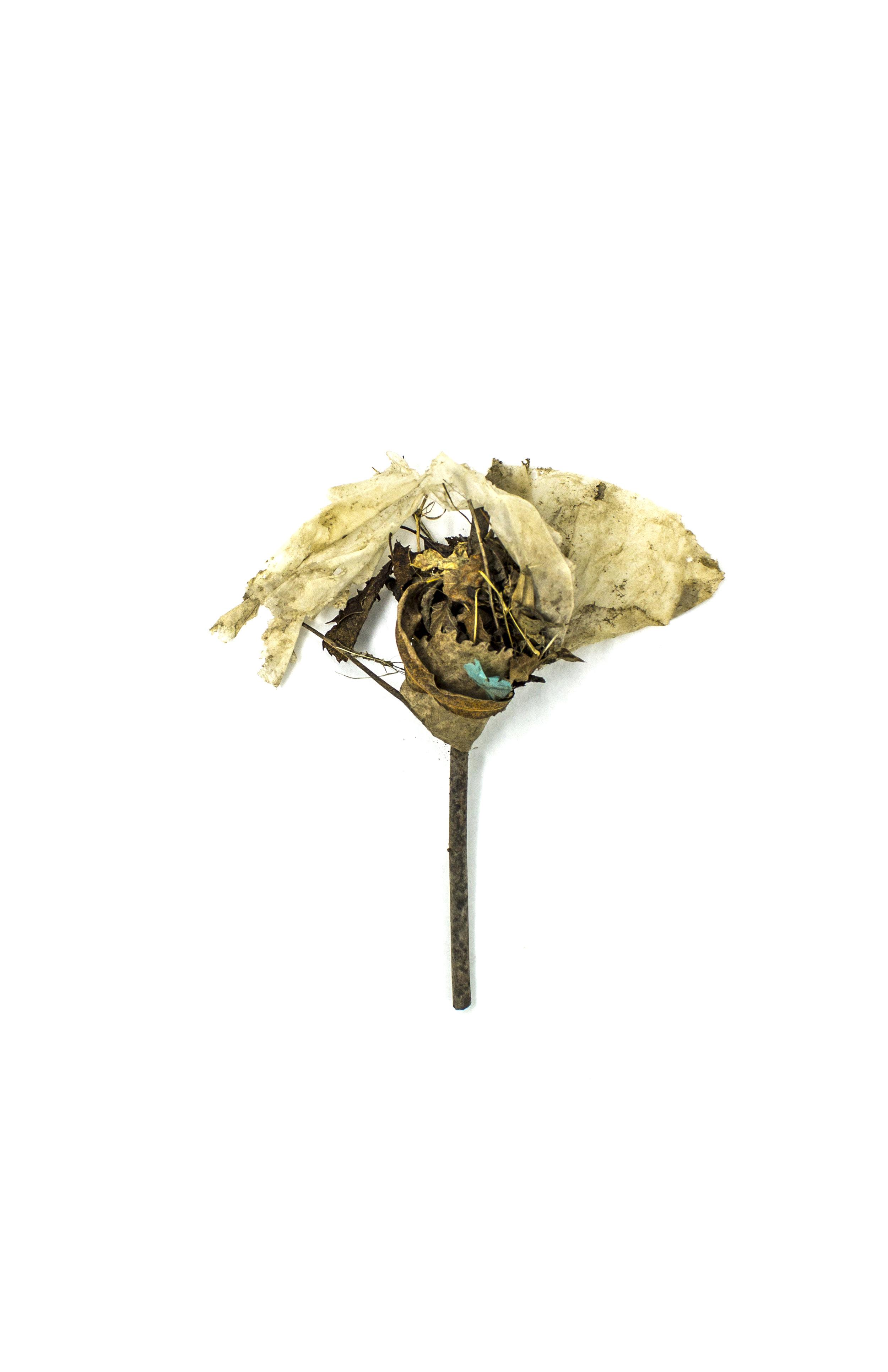 Debris_Flower_31.jpg