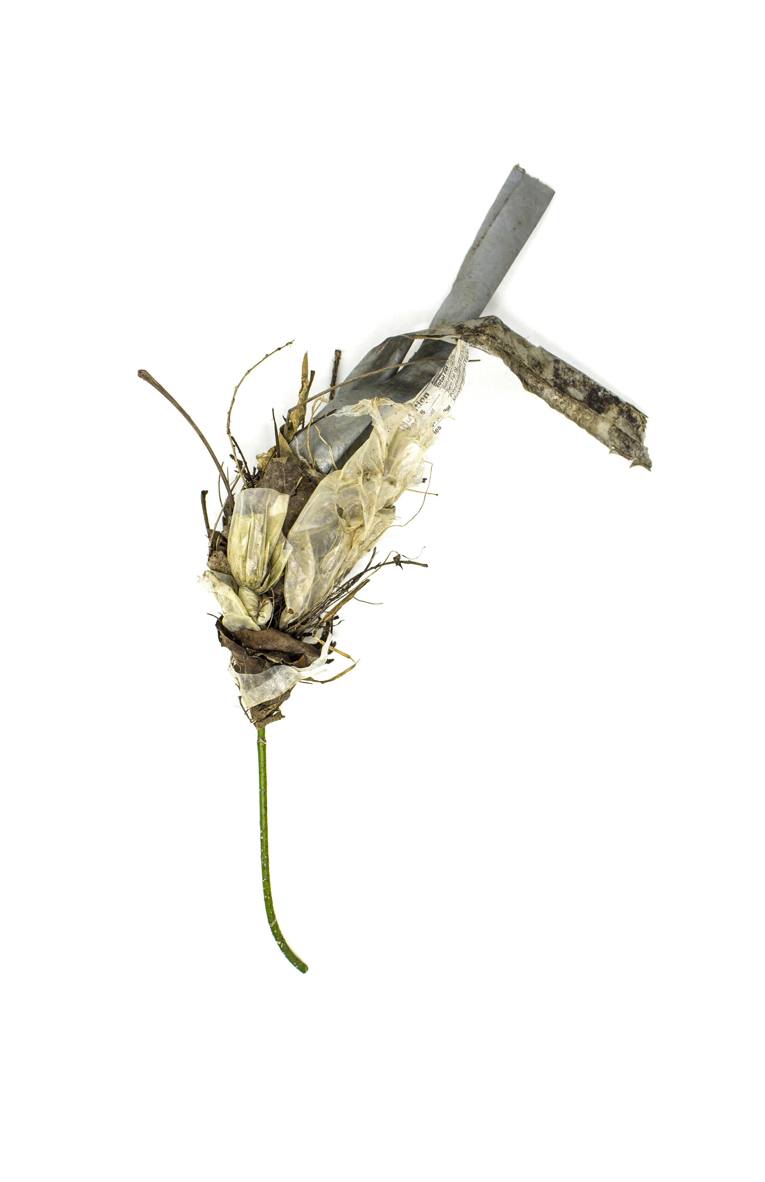 Debris_Flower_45.jpg