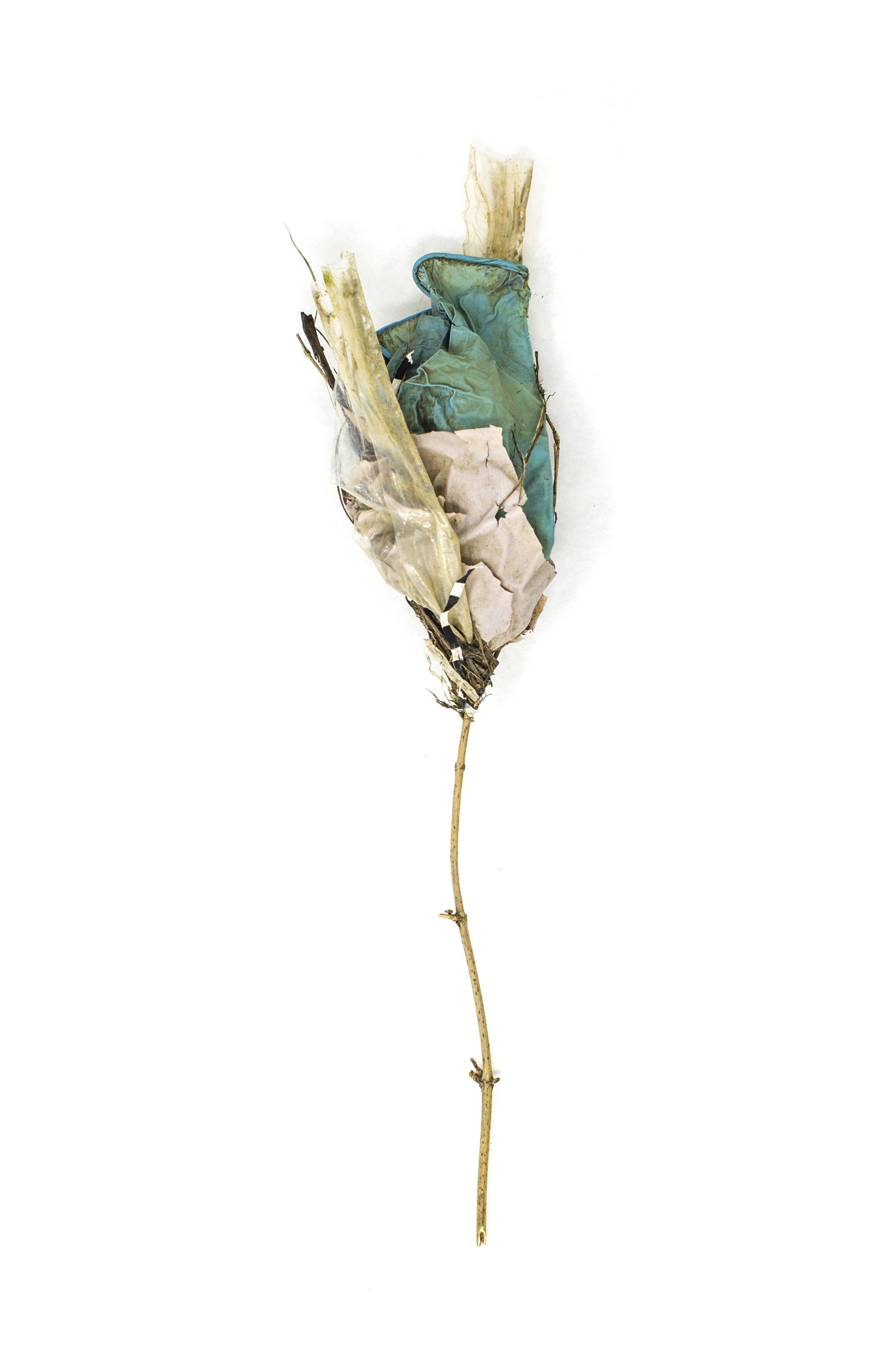 Debris_Flower_47.jpg