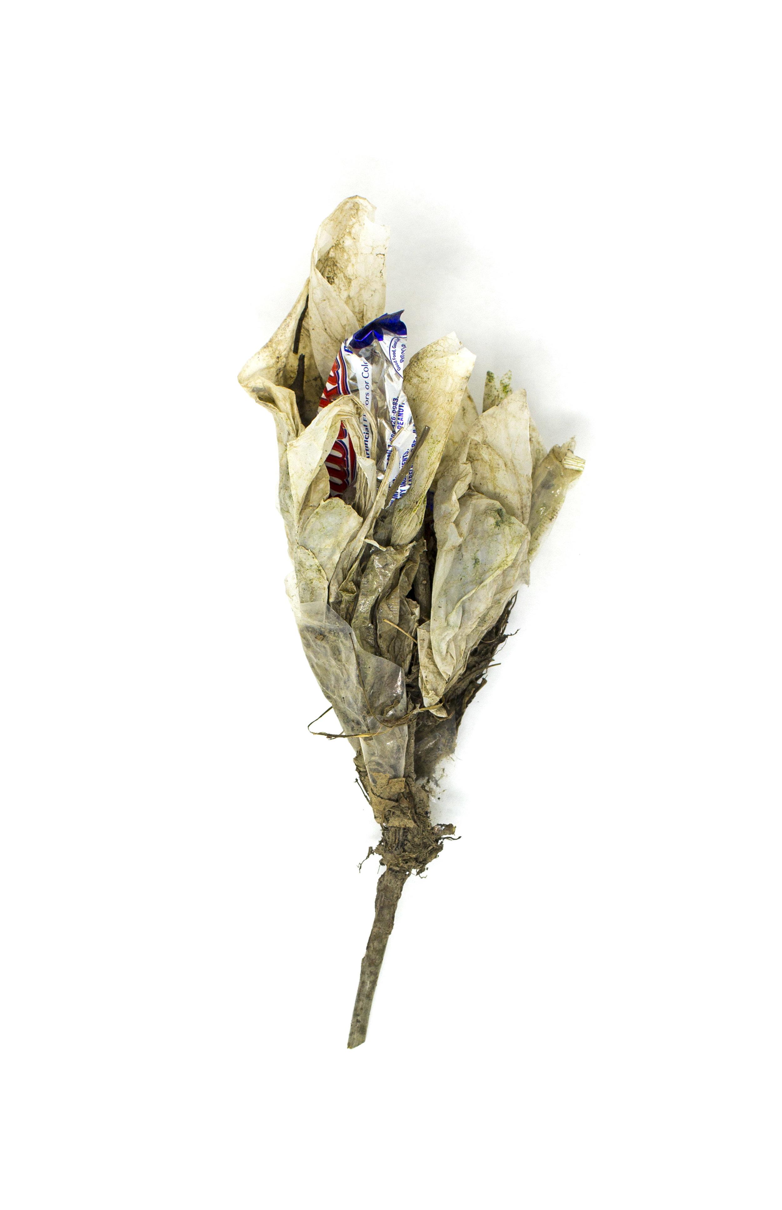 Debris_Flower_49.jpg