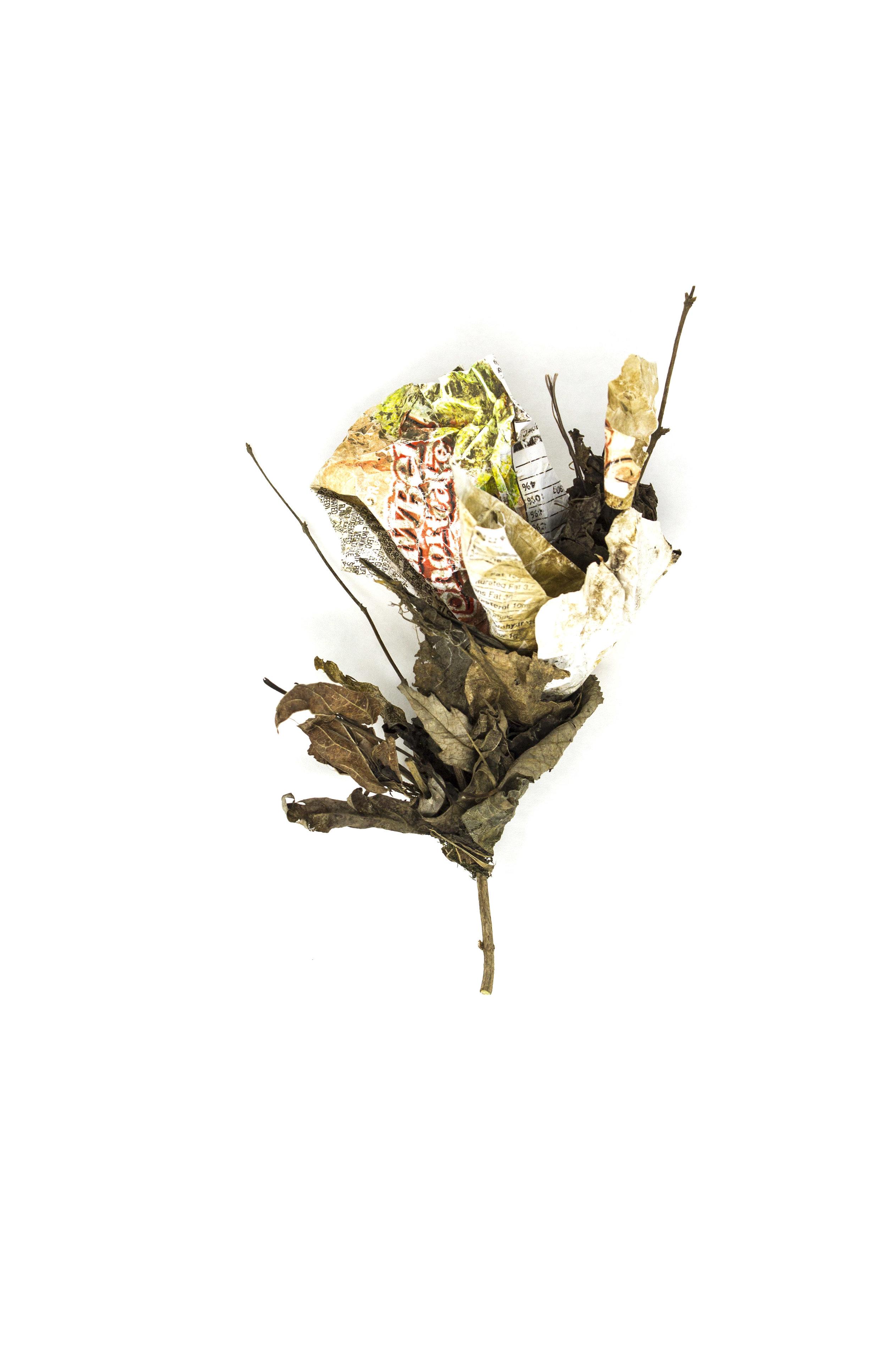 Debris_Flower_51.jpg