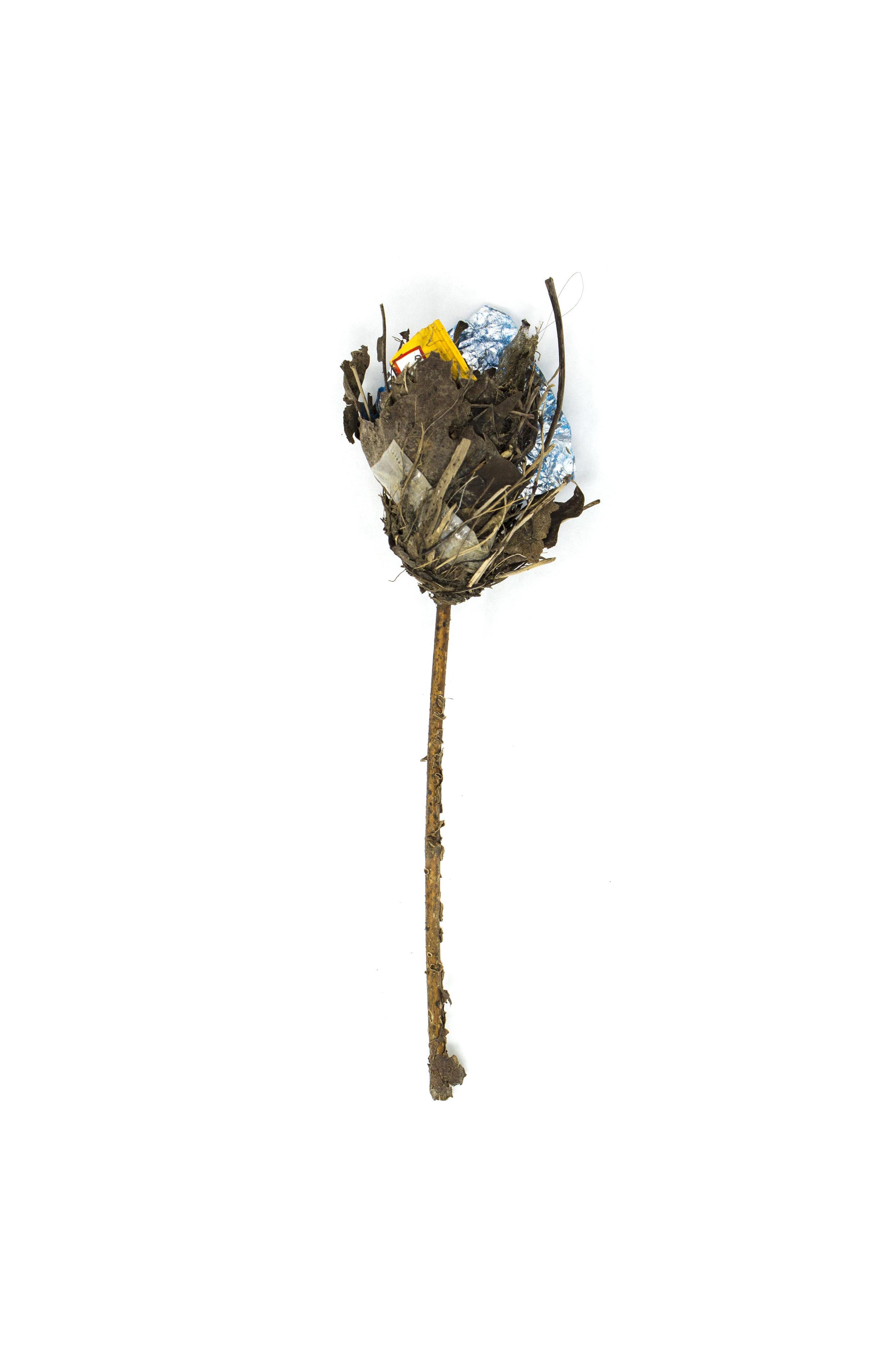 Debris_Flower_53.jpg