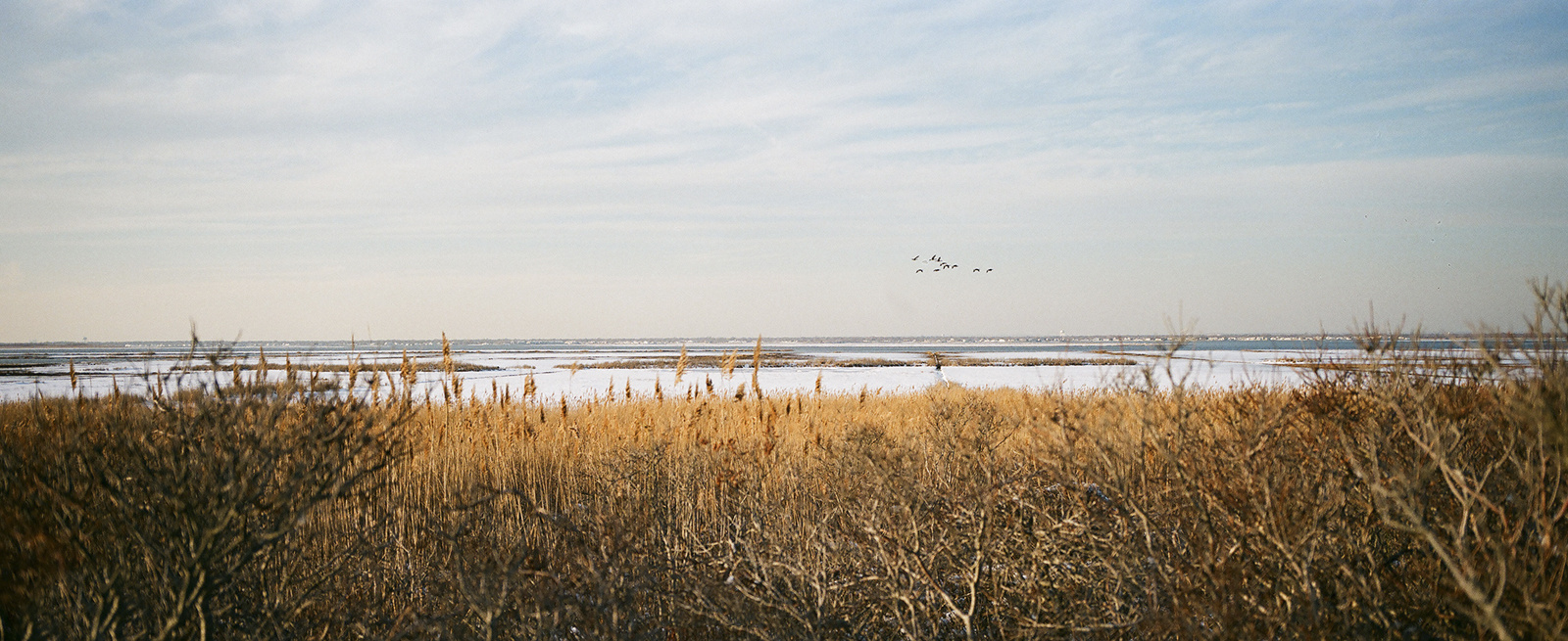 From  Hallowed Ground : Gilgo Beach, off of Ocean Parkway on Long Island, where several of the women's bodies were found.