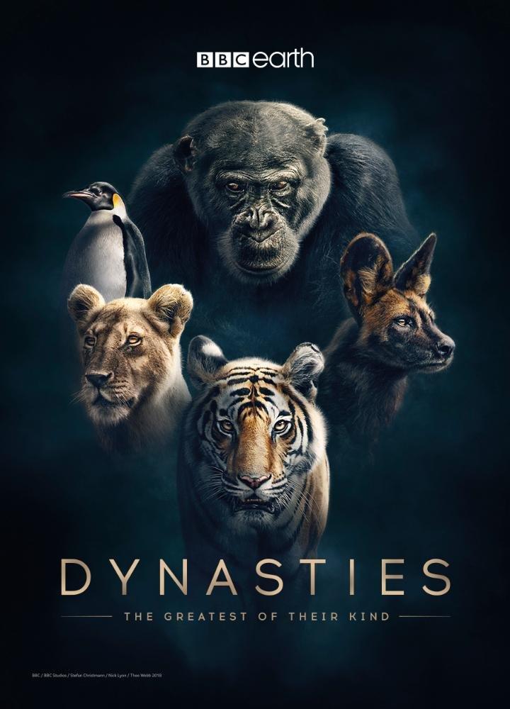 bbc one dynasties.jpg