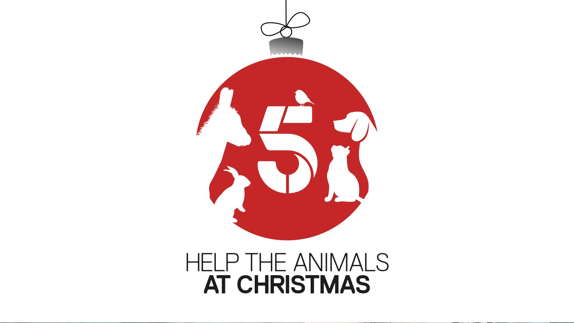 help the animals at christmas.jpg