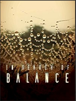 In Search Of Balance