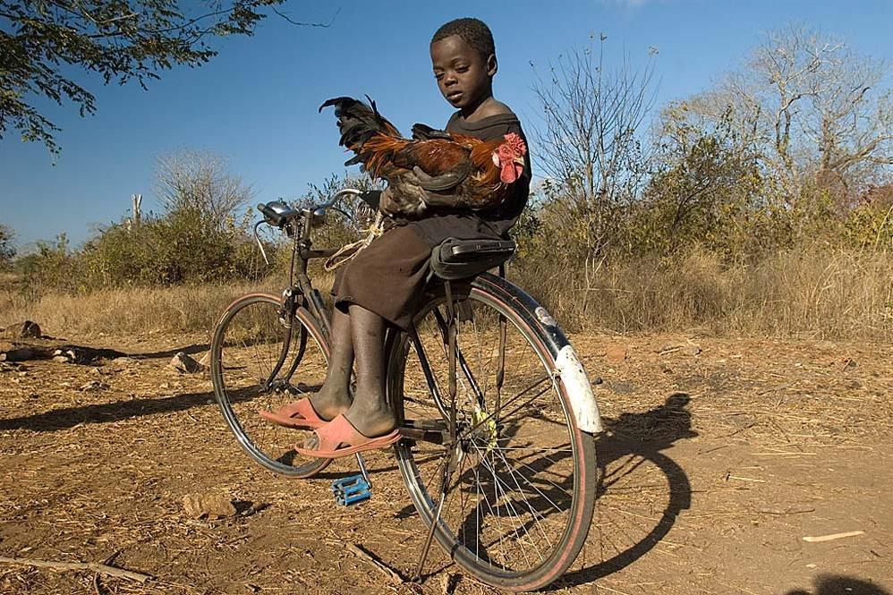 009_Moçambique.jpg