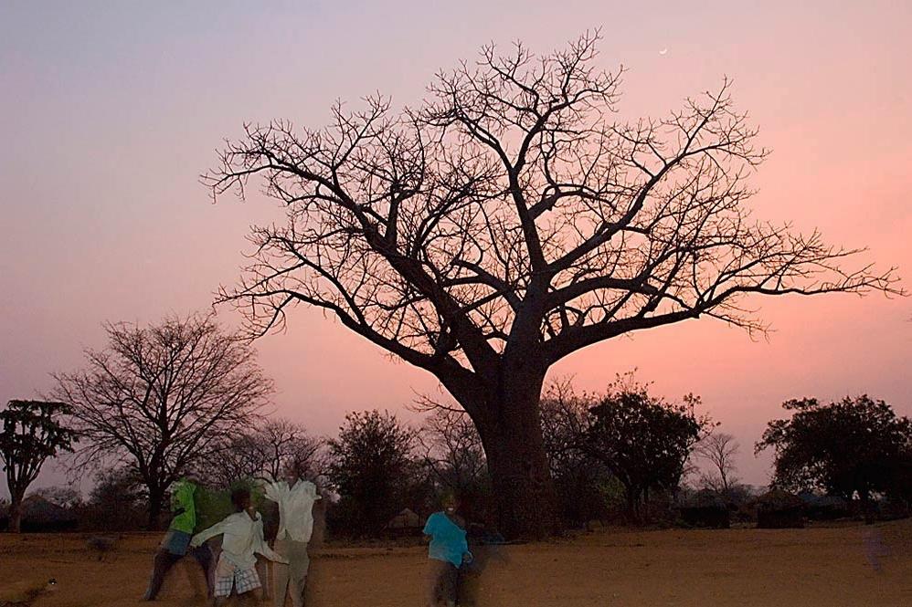 001_Moçambique.jpg