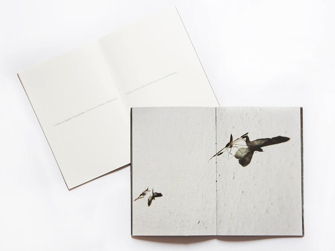 Proposta de publicação com dois cadernos, um de texto e outro de imagens.