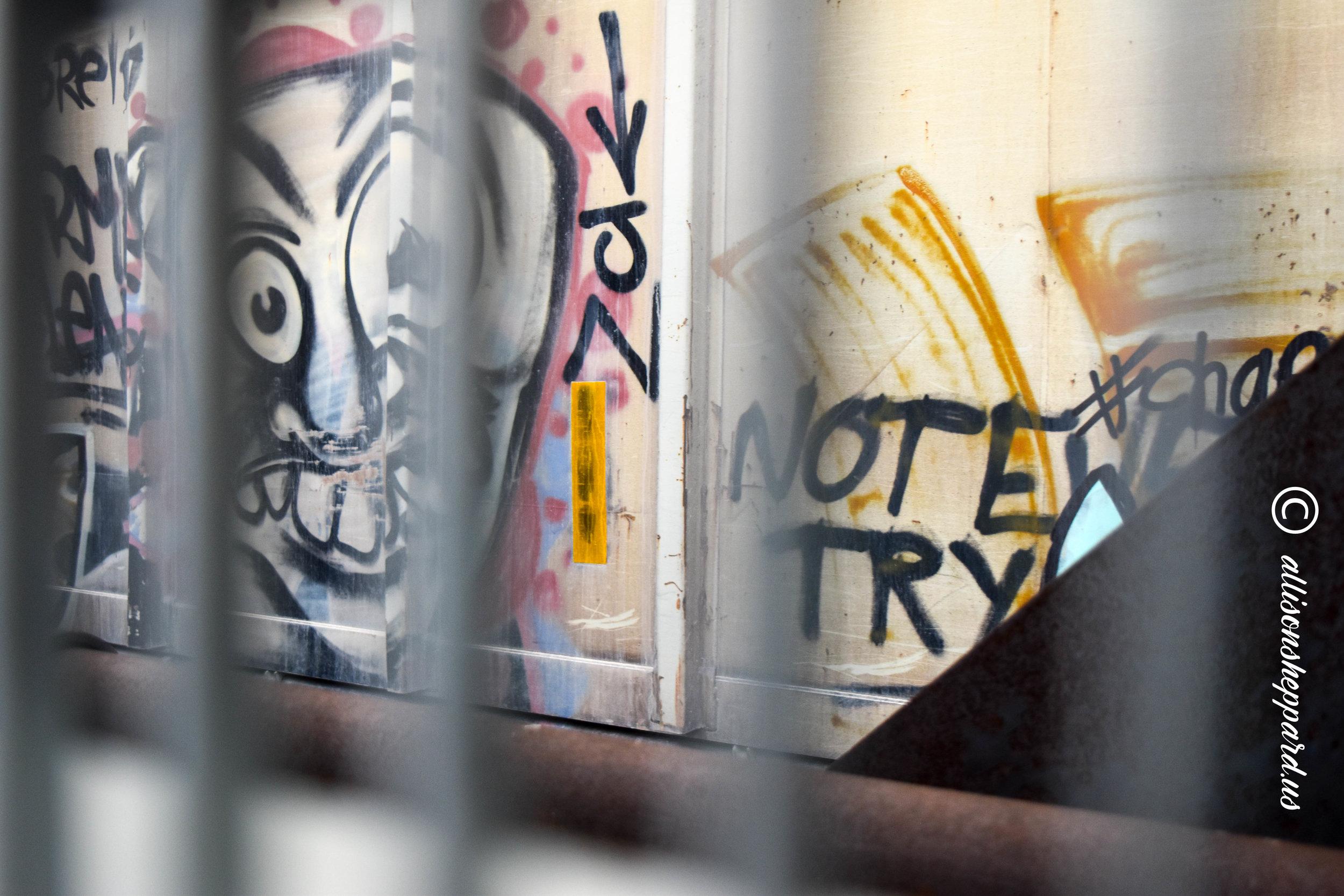 BRC-train-scary face graffiti.jpg