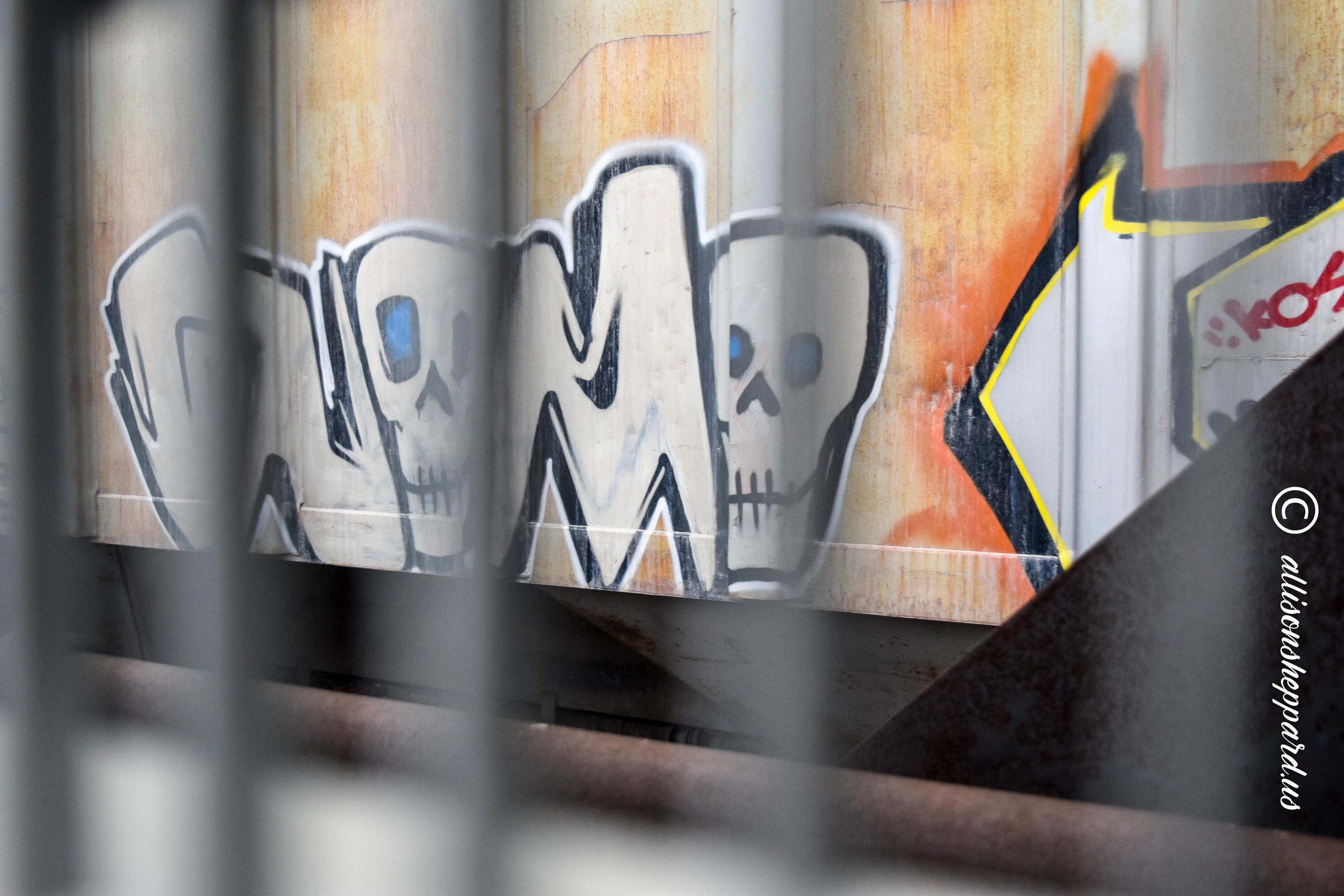 BRC-train-skulls graffiti.jpg