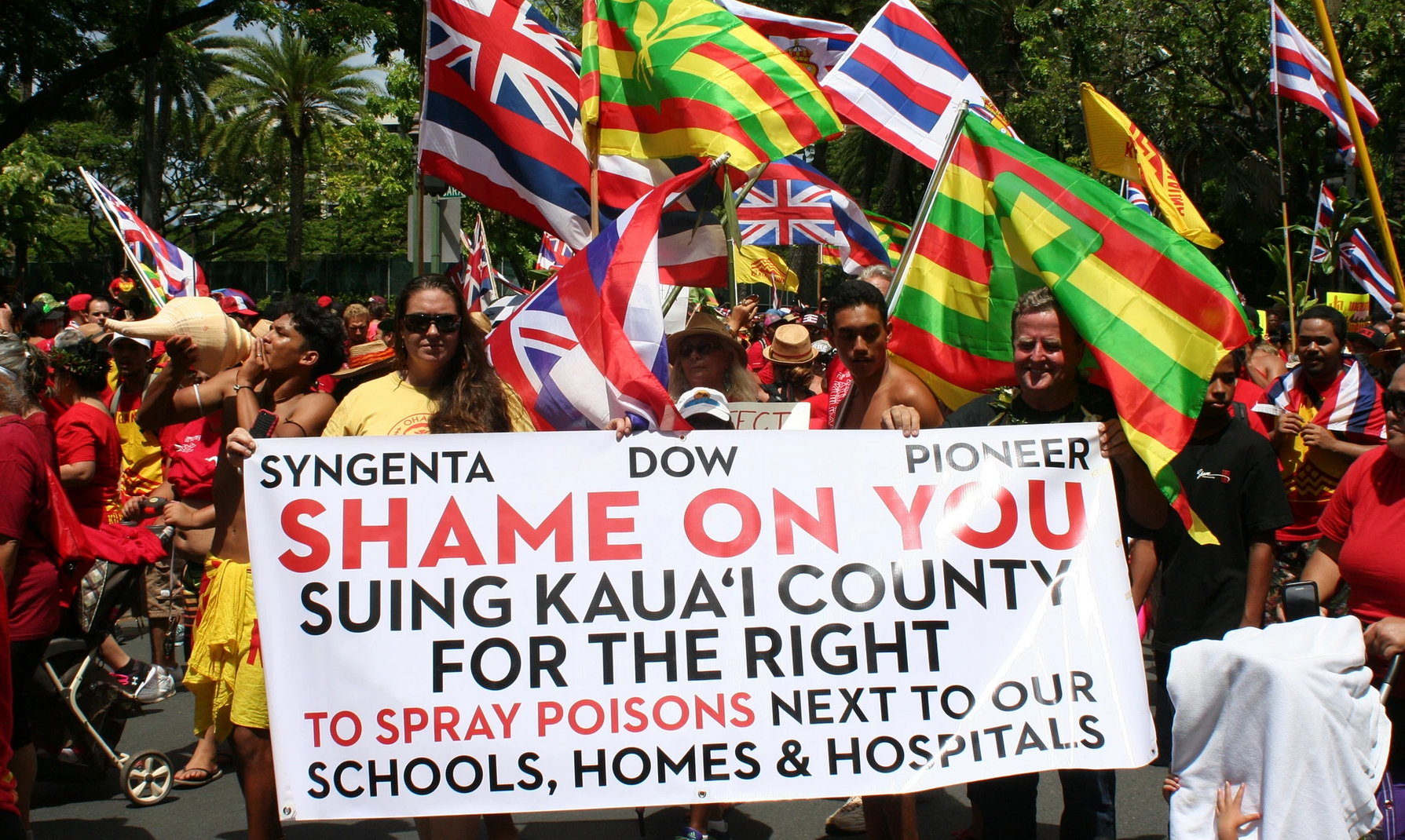 After four separate attempts to rein in the GMO companies failed, an estimated 10,000 people marched in 2015 through Honolulu's Waikiki tourist district. It was out of this political landscape that HAPA arose.   Photograph: Christopher Pala