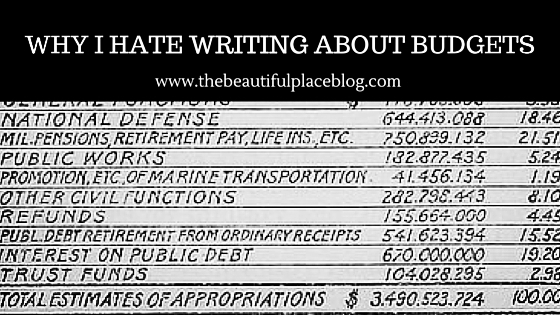 Image of a Budget That I Hate