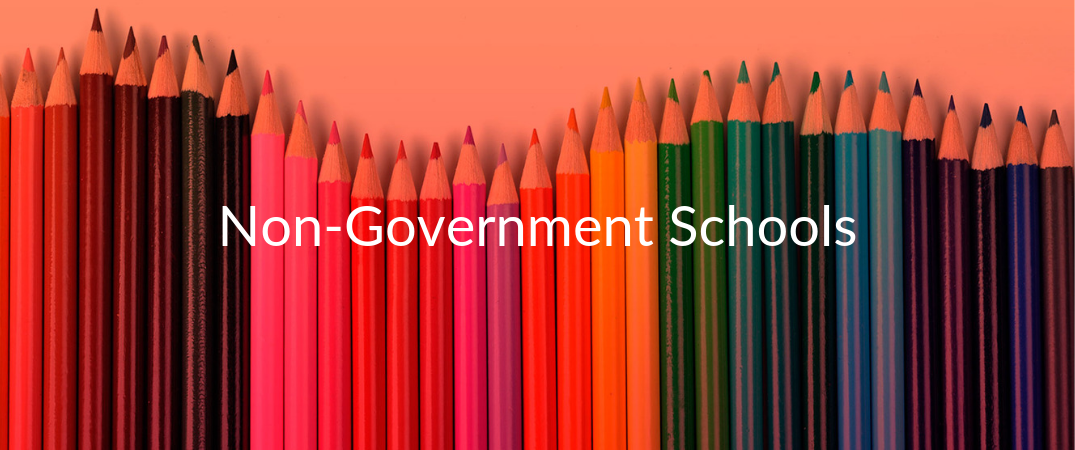 Non-Government School Services