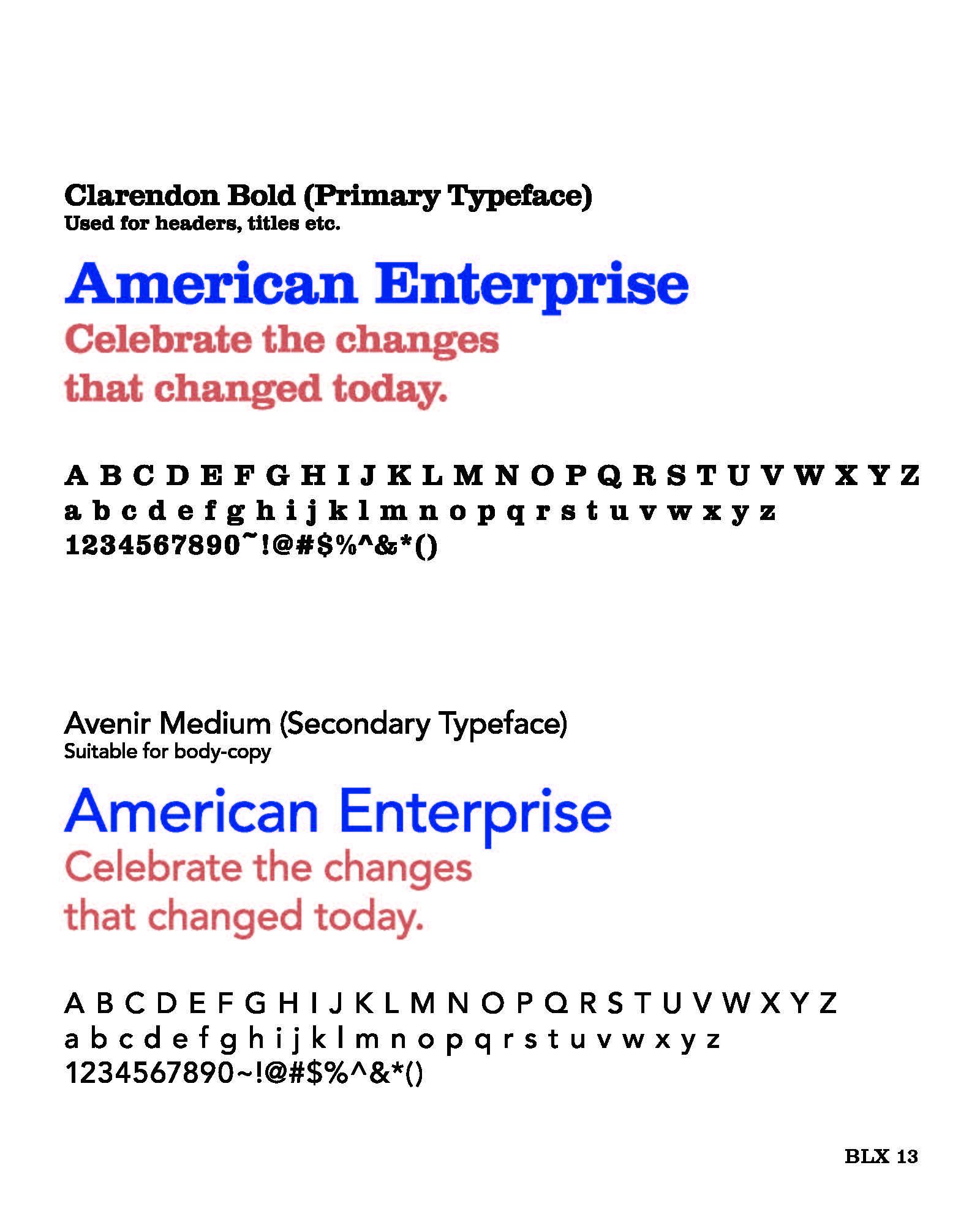American Enterprise Plans Book%2C 2013%28cut%29_Page_17.jpg