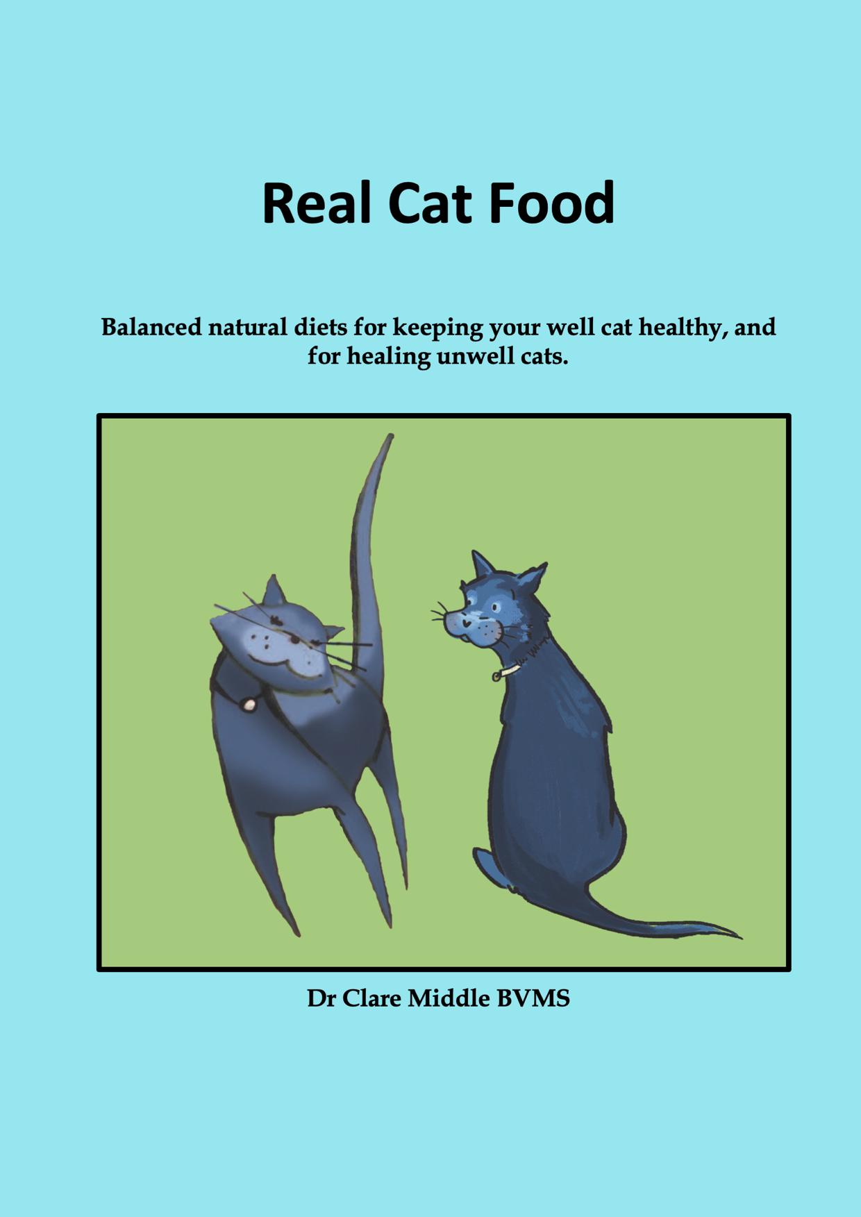 Real Cat Food_Cover_B5.jpeg