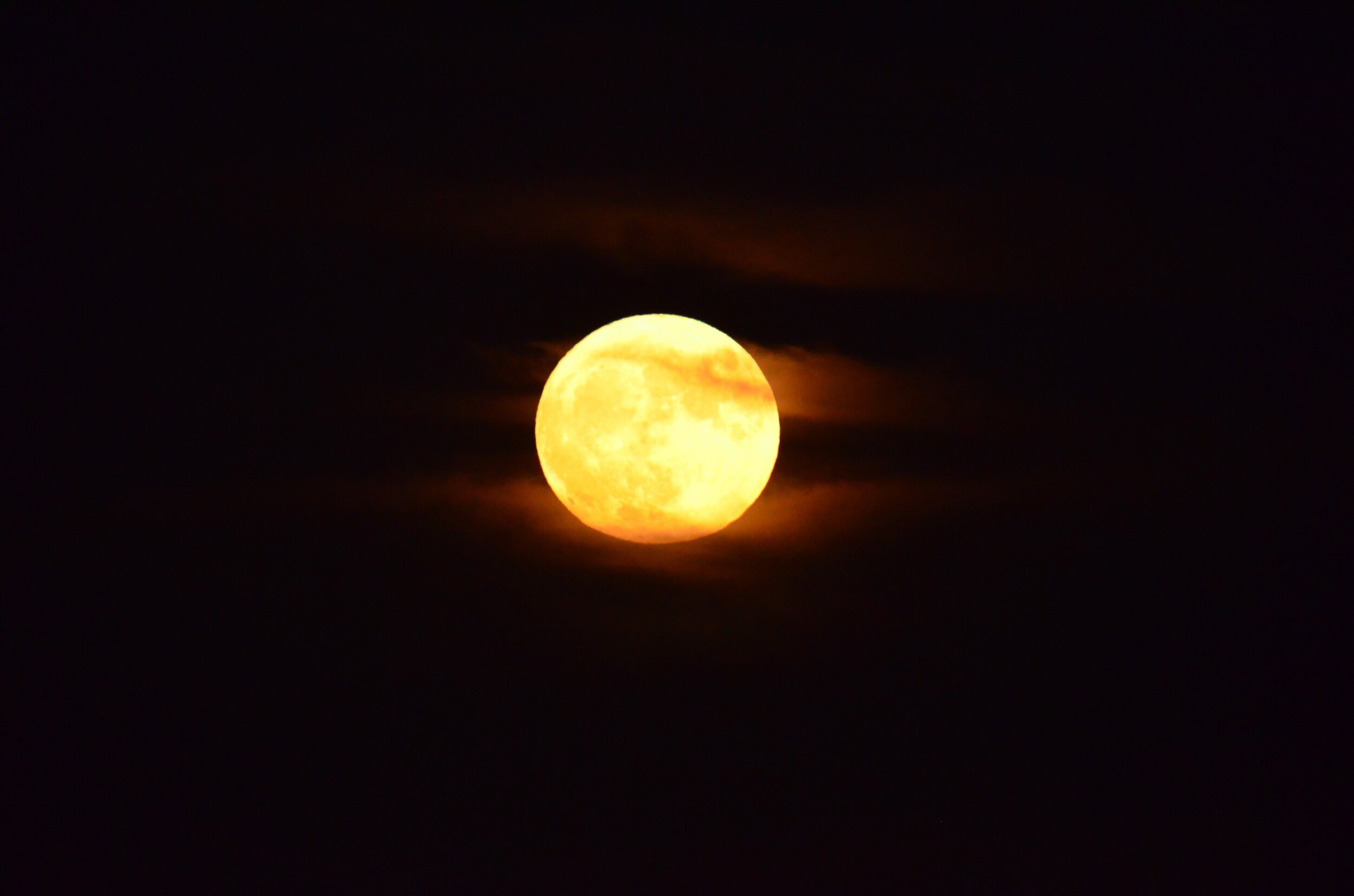 The harvest moon in its full glory