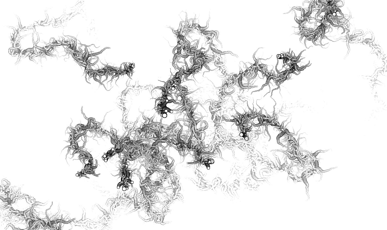 roots2_u.png