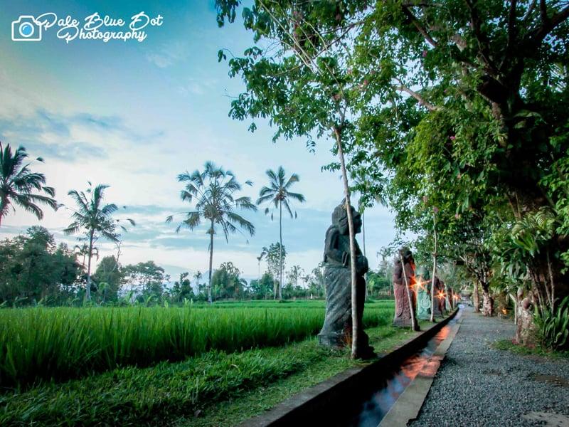 Balie_9.jpg